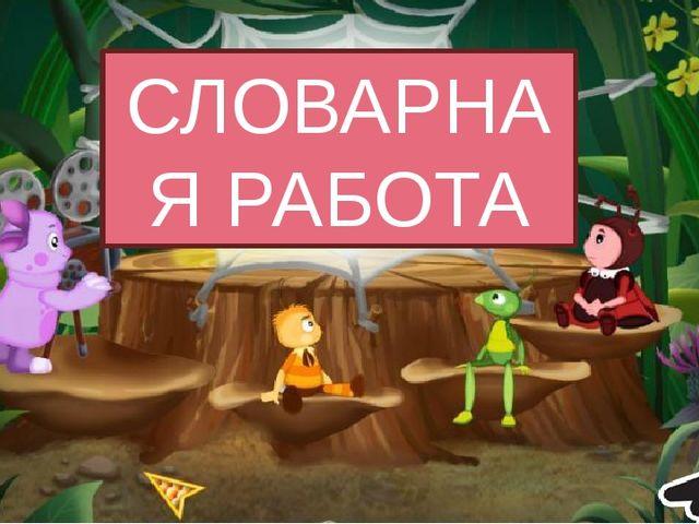 В . РОНА ЗА . Ц В . Р . БЕЙ П . ТУХ О О О Я Е