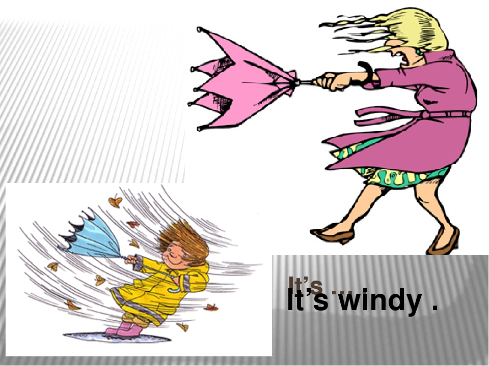 It's … . It's windy .