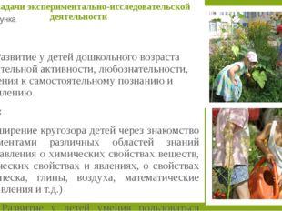 Классификация детского экспериментирования констатирующие (позволяющие увидет
