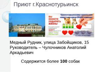 Приют г.Краснотурьинск Медный Рудник, улица Забойщиков, 15 Руководитель – Чул
