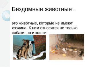 Бездомные животные – это животные, которые не имеют хозяина. К ним относятся