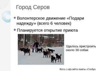 Город Серов Волонтерское движение «Подари надежду» (всего 6 человек) Планируе