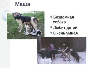 Маша Бездомная собака Любит детей Очень умная