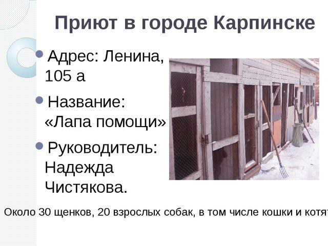 Приют в городе Карпинске Адрес: Ленина, 105 а Название: «Лапа помощи» Руковод...