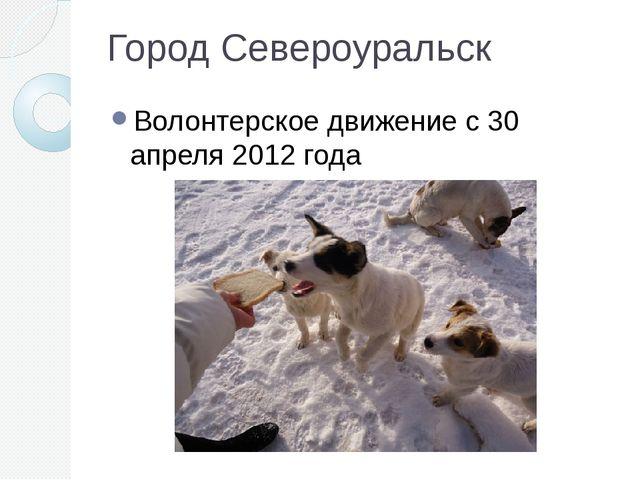 Город Североуральск Волонтерское движение с 30 апреля 2012 года
