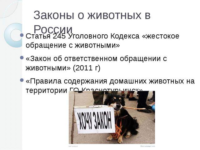 Законы о животных в России Статья 245 Уголовного Кодекса «жестокое обращение...