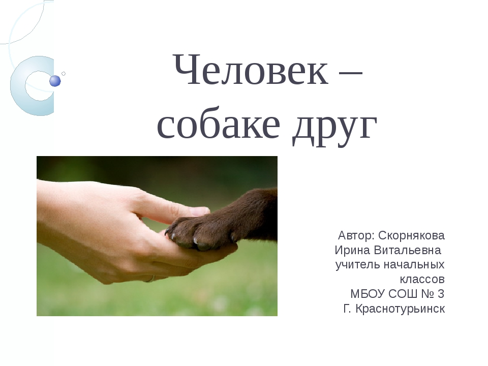 Человек – собаке друг Автор: Скорнякова Ирина Витальевна учитель начальных кл...