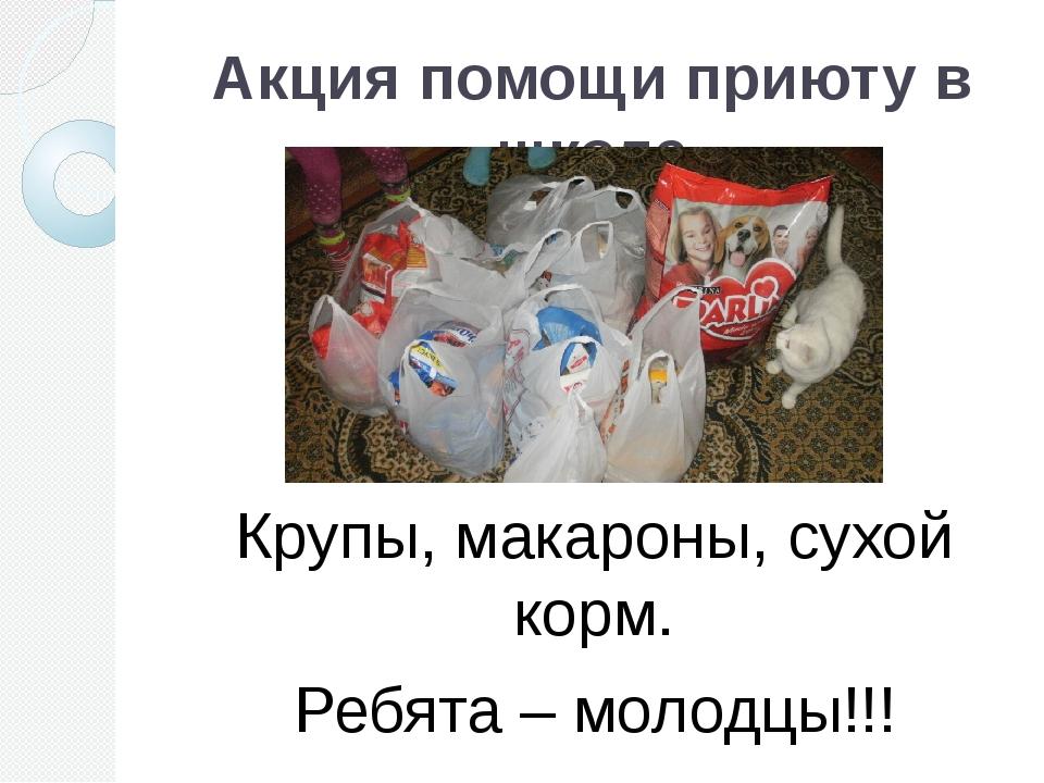 Акция помощи приюту в школе Крупы, макароны, сухой корм. Ребята – молодцы!!!
