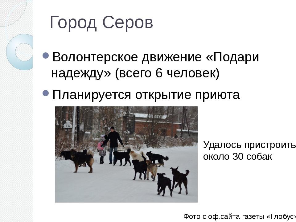 Город Серов Волонтерское движение «Подари надежду» (всего 6 человек) Планируе...