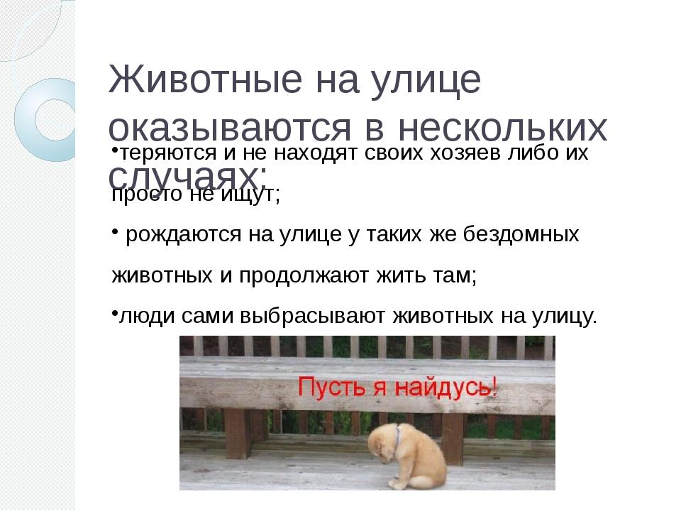 Животные на улице оказываются в нескольких случаях: теряются и не находят сво...