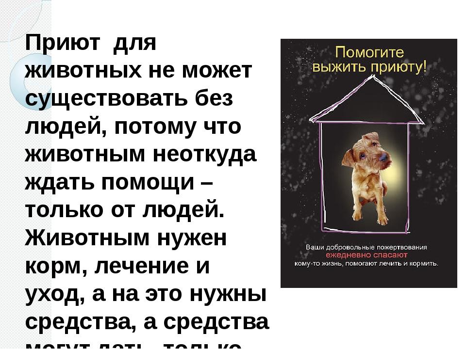 Приют для животных не может существовать без людей, потому что животным неотк...