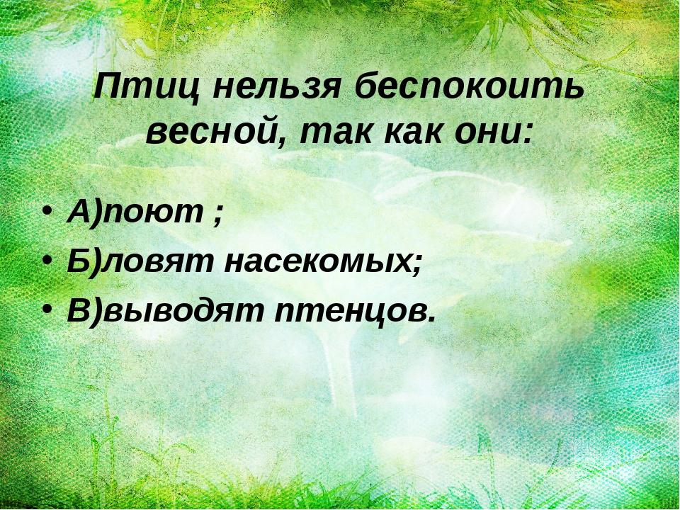Птиц нельзя беспокоить весной, так как они: А)поют ; Б)ловят насекомых; В)выв...
