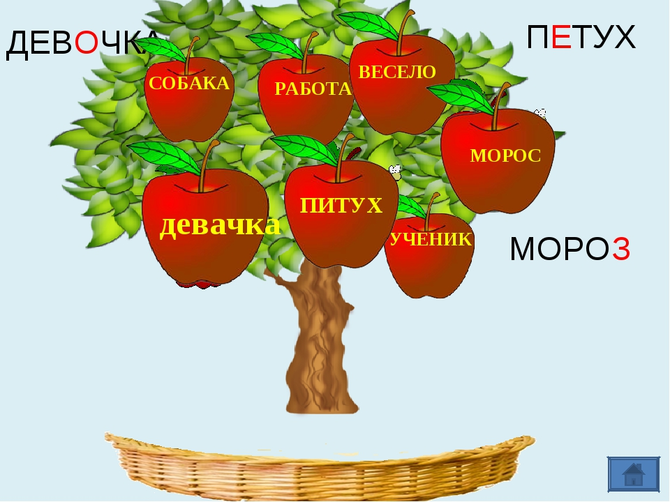 ДЕВОЧКА ПЕТУХ МОРОЗ