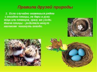 Правила друзей природы 1. Если случайно окажешься рядом с гнездом птицы, не б