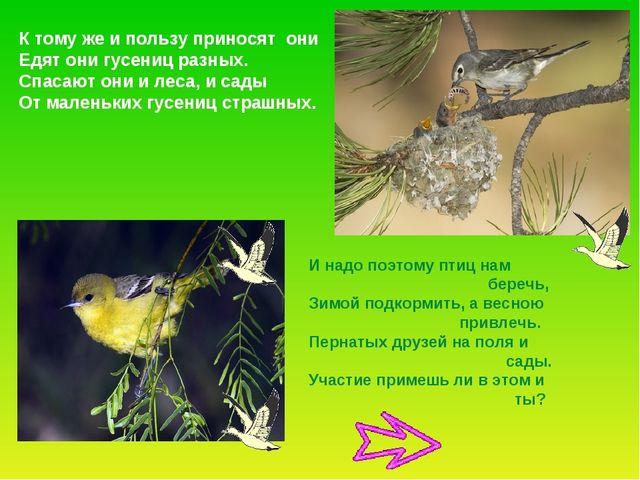 К тому же и пользу приносят они Едят они гусениц разных. Спасают они и леса,...