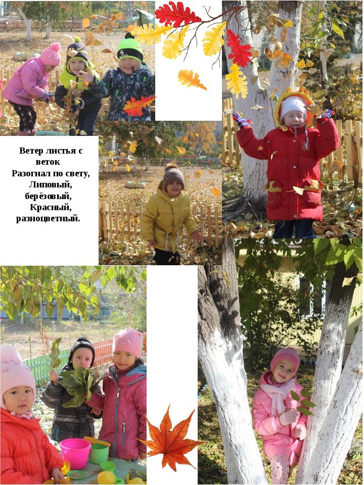 Ветер листья с веток Разогнал по свету, Липовый, берёзовый, Красный, разноцве...