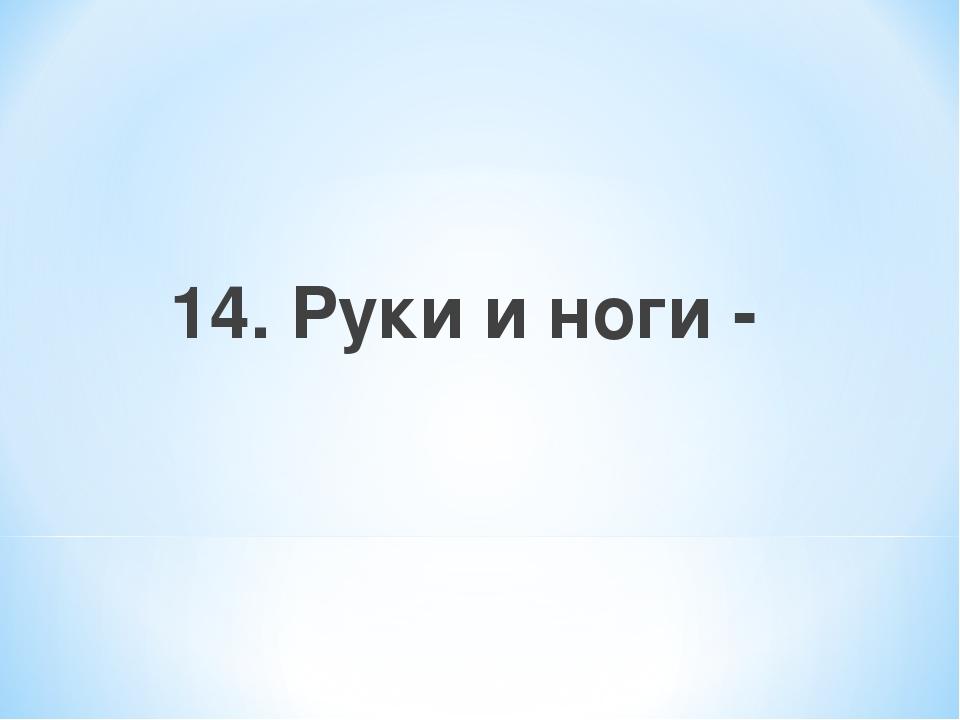 14. Руки и ноги -