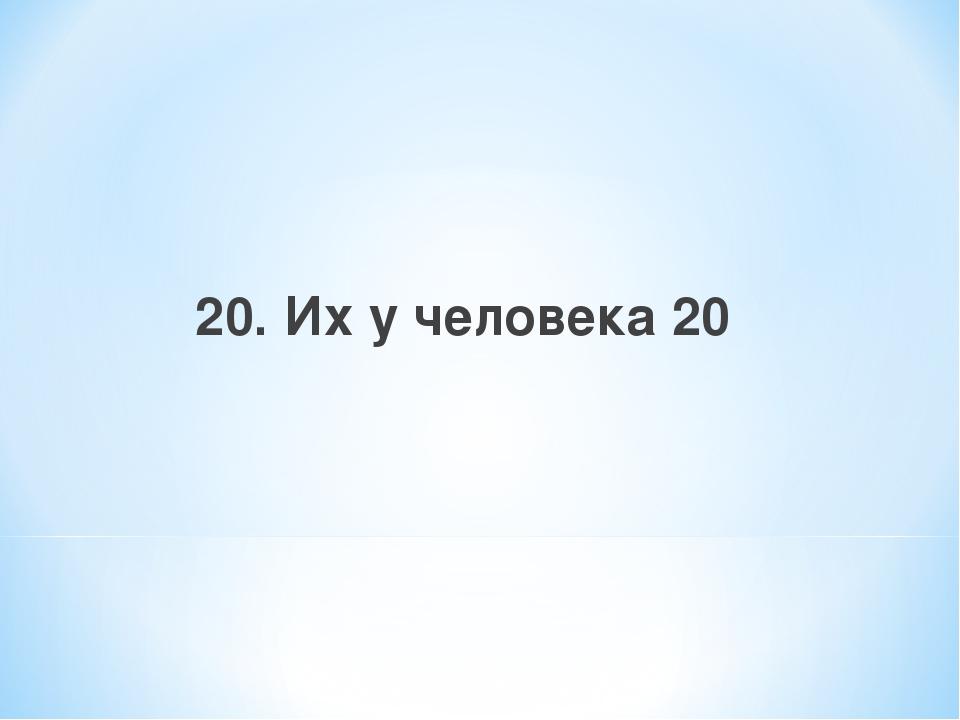 20. Их у человека 20