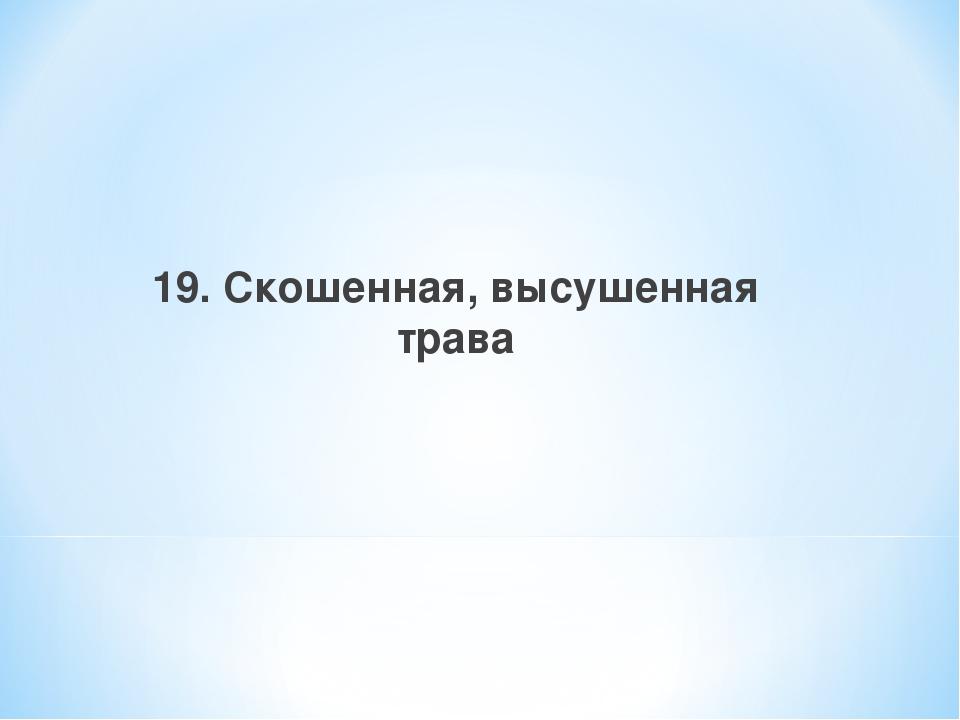 19. Скошенная, высушенная трава