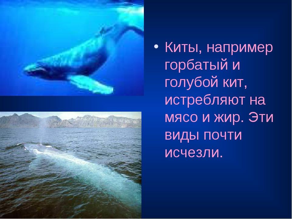 Киты, например горбатый и голубой кит, истребляют на мясо и жир. Эти виды поч...