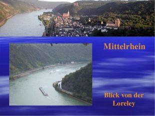 Mittelrhein Blick von der Loreley