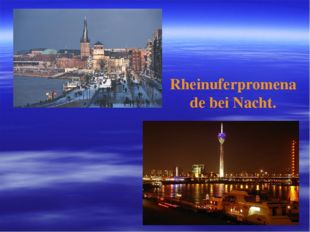 Rheinuferpromenade bei Nacht.