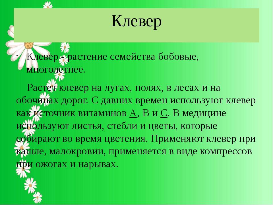 Клевер Клевер - растение семейства бобовые, многолетнее. Растет клевер на луг...
