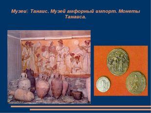 Музей Танаис. Музей амфорный импорт. Монеты Танаиса.
