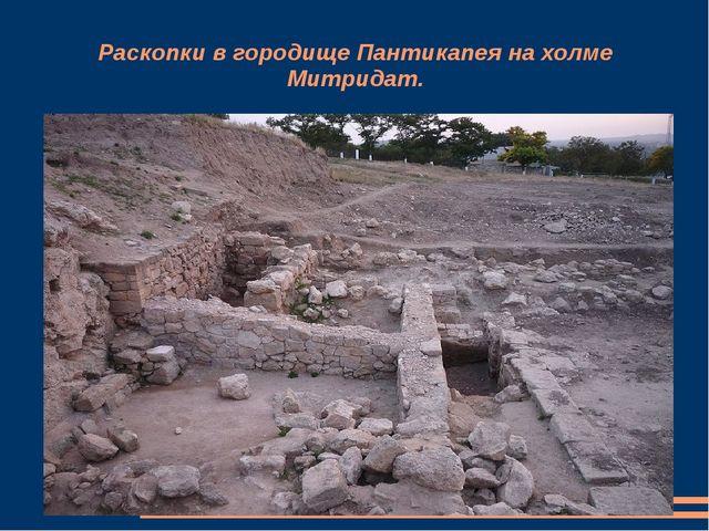 Раскопки в городище Пантикапея на холме Митридат.