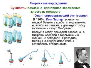 В какой области биологии сделал свои открытия Л. Пастер? 1)цитологии 2)ботани