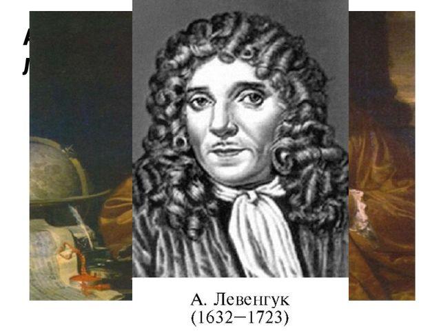 Изготовил линзы с 150-300 кратным увеличением, впервые пронаблюдал и зарисова...