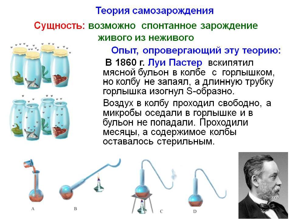 В какой области биологии сделал свои открытия Л. Пастер? 1)цитологии 2)ботани...