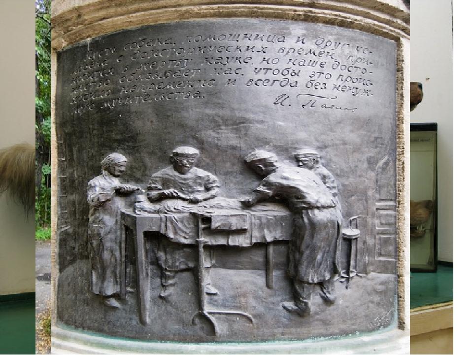 Ива́н Петро́вич Па́влов 1849—1936)— русский учёный, первый русский нобеле...