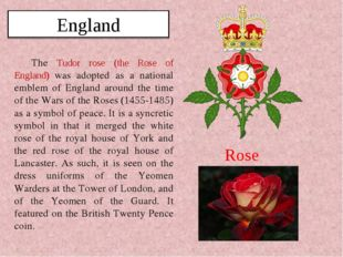 The Tudor rose (the Rose of England) was adopted as a national emblem of Engl