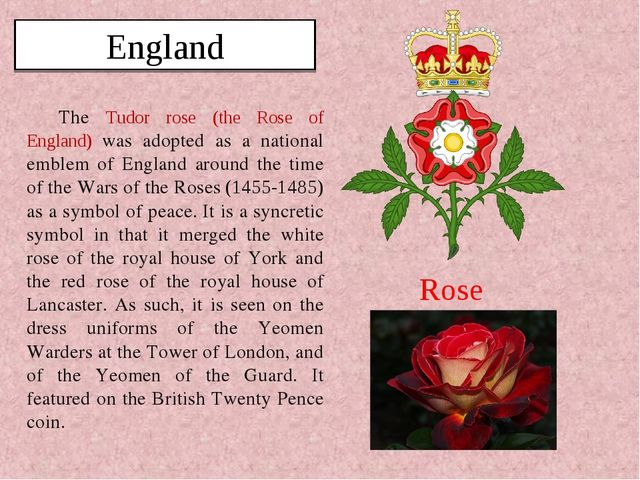 The Tudor rose (the Rose of England) was adopted as a national emblem of Engl...