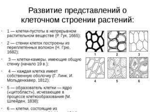 Развитие представлений о клеточном строении растений: 1 — клетки-пустоты в не