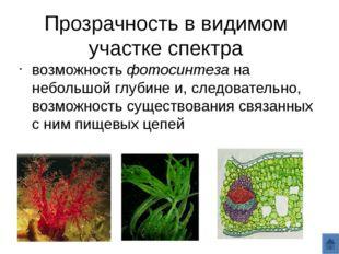 Прозрачность в видимом участке спектра возможность фотосинтеза на небольшой г