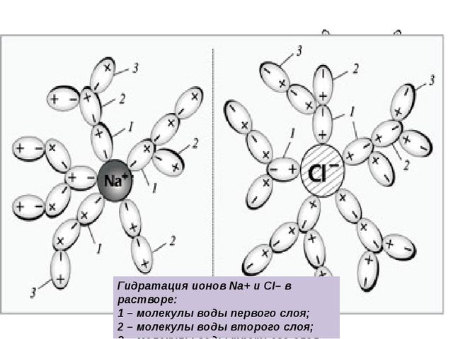 Благодаря полярности молекул: самый распространенный в природе растворитель,...