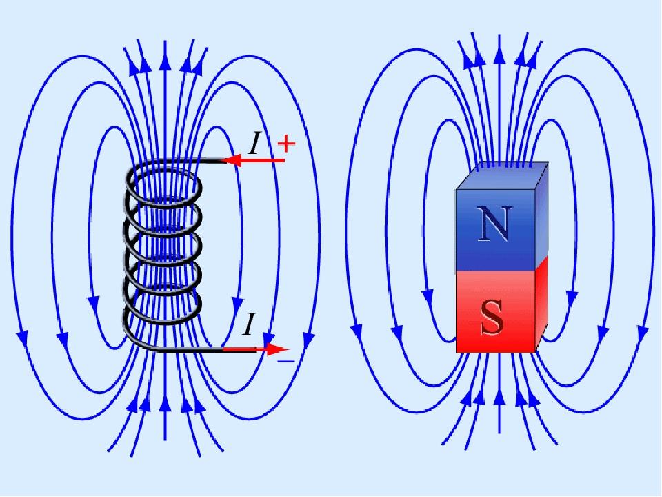 что имя магнитное поле создается направленным движением электронов речного рака делится