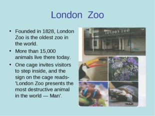 London Zoo Founded in 1828, London Zoo is the oldest zoo in the world. More t