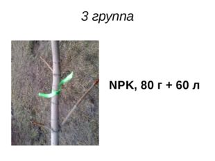 3 группа NPK, 80 г + 60 л