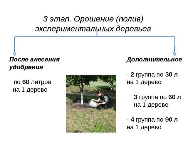 3 этап. Орошение (полив) экспериментальных деревьев После внесения удобрения...
