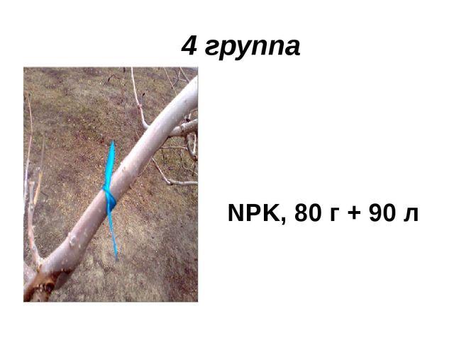 4 группа NPK, 80 г + 90 л