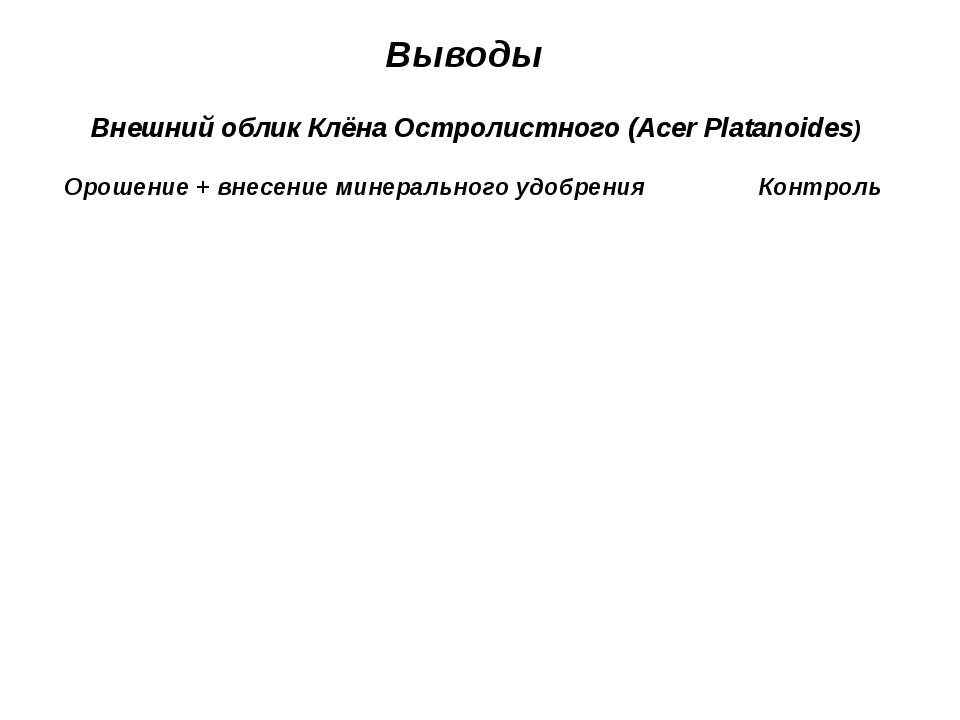 Выводы Внешний облик Клёна Остролистного (Acer Platanoides) Орошение + внесен...
