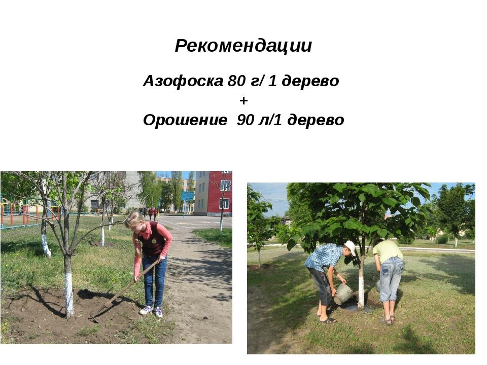 Рекомендации Азофоска 80 г/ 1 дерево + Орошение 90 л/1 дерево