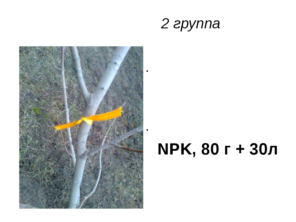 2 группа NPK, 80 г + 30л