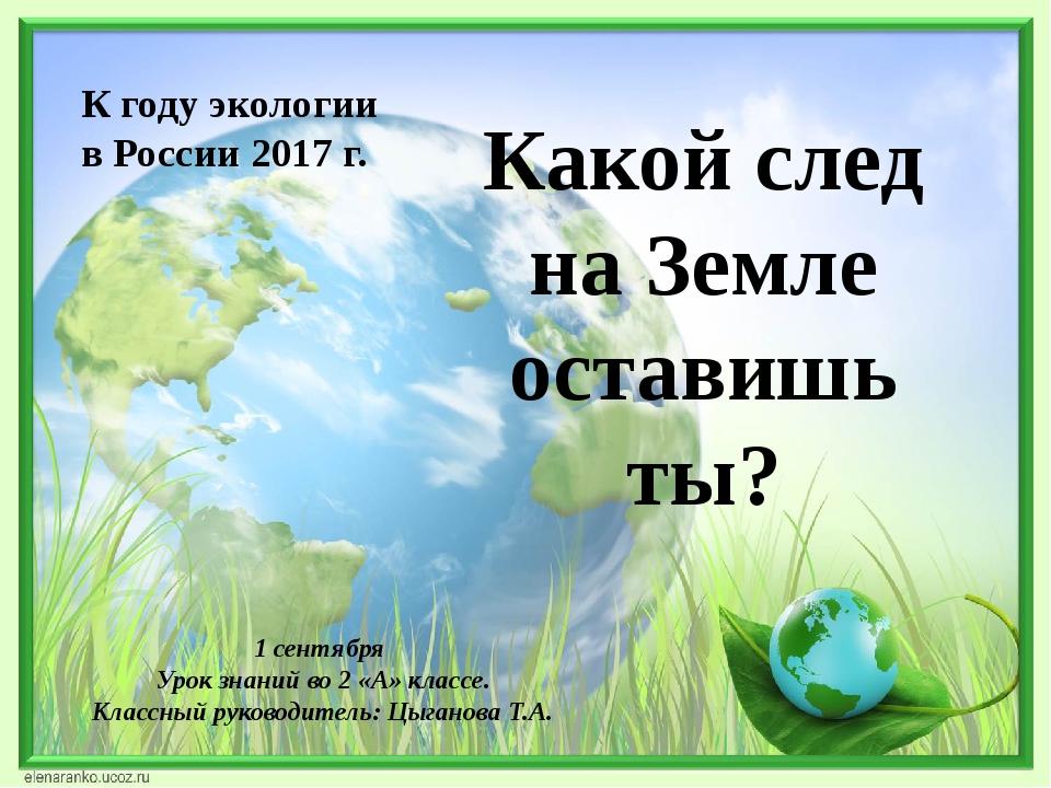 Какой след на Земле оставишь ты? К году экологии в России 2017 г. 1 сентября...