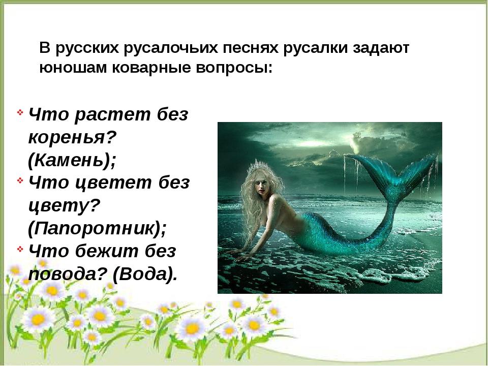 В русских русалочьих песнях русалки задают юношам коварные вопросы: Что раст...