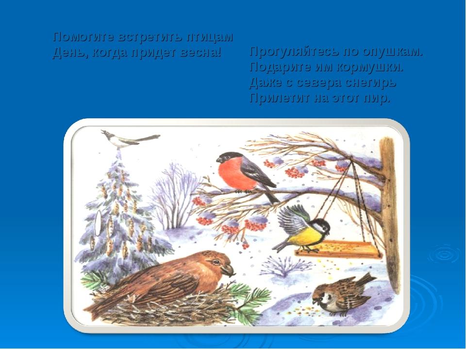 Помогите встретить птицам День, когда придет весна! Прогуляйтесь по опушкам....