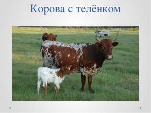 Корова с телёнком